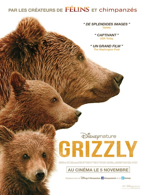 Grizzly14heures